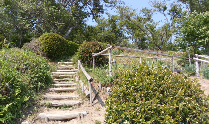 白岩寺公園 最後の階段